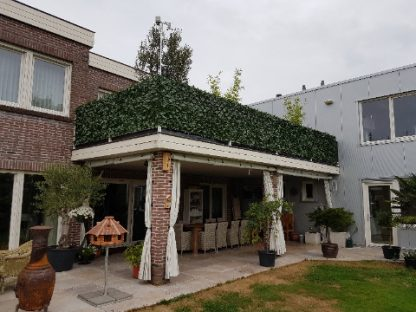 Kunsthaag-Laurier-Prunus-Balkon2