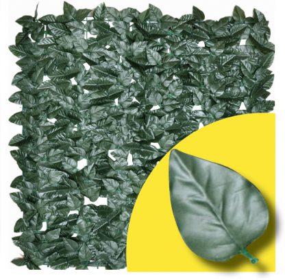 Kunsthaag-Laurier-Prunus-Rol