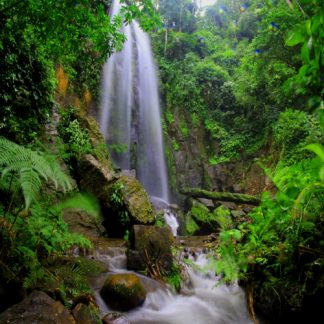 Jungle-tuindoek-Waterfall