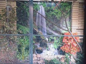 Wanddoek-Waterfall-Jungle